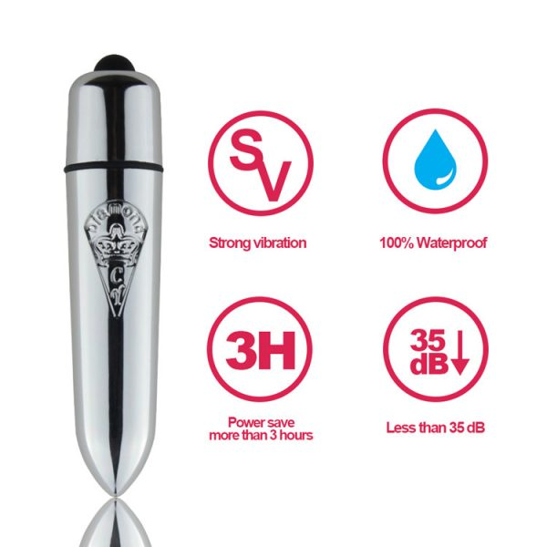Magic Bullet 10 Function Silver Bullet Vibrator