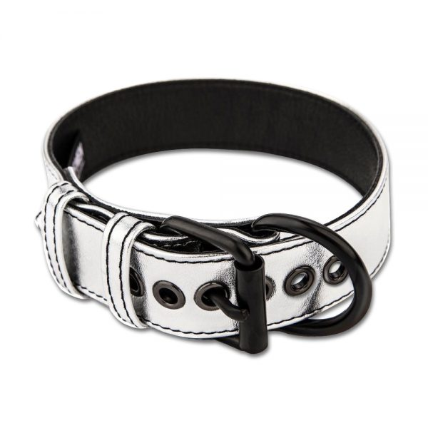 Bondage Fetish Metallic Pup Collar With LeashBondage Fetish Metallic Pup Collar With LeashBondage Fetish Metallic Pup Collar With Leash